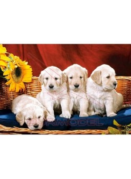 Puzzle perros 1000 piezas