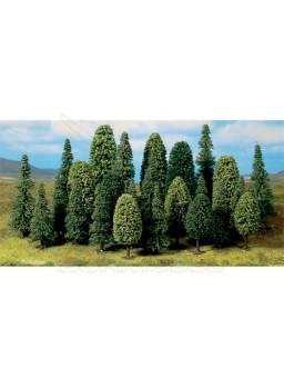 Bosque mixto formado por 25 árboles