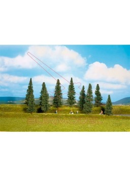 Bosque mixto formado por 10 árboles de 10 a 14cm