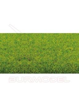 Tapiz de hierba primavera plancha 120x60cm
