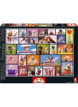 Puzzle 1000 piezas momentos compartidos