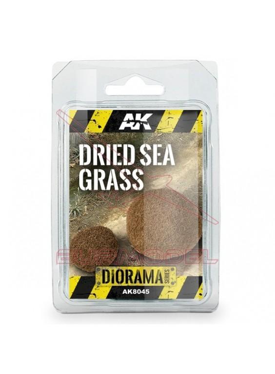 Set hierba seca del mar