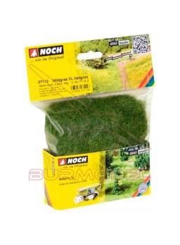Hierbas salvajes XL verde claro