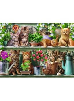 Puzzle 500 piezas ravensburger gatos en el estante