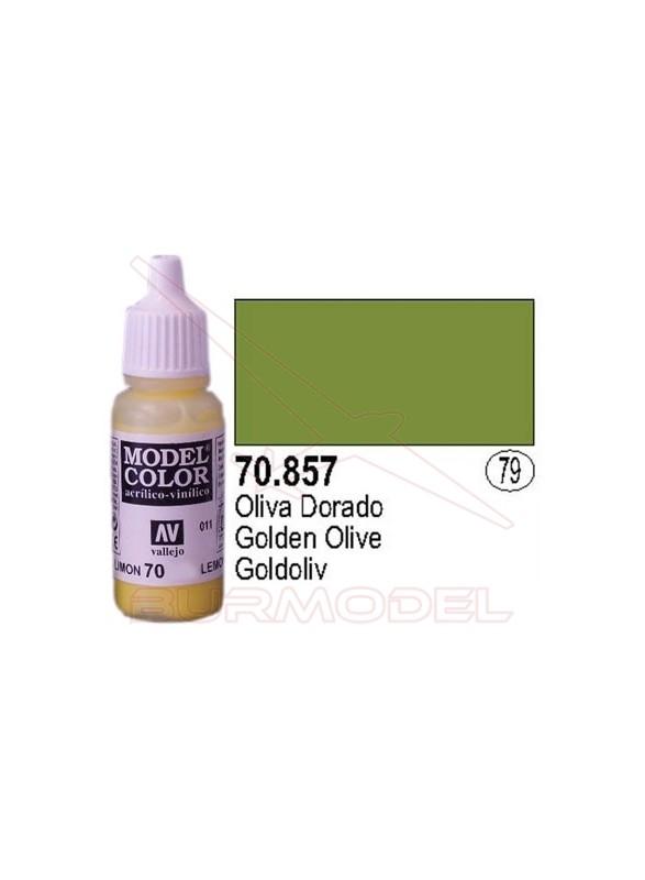 Pintura Oliva dorado 857 Model Color (079)