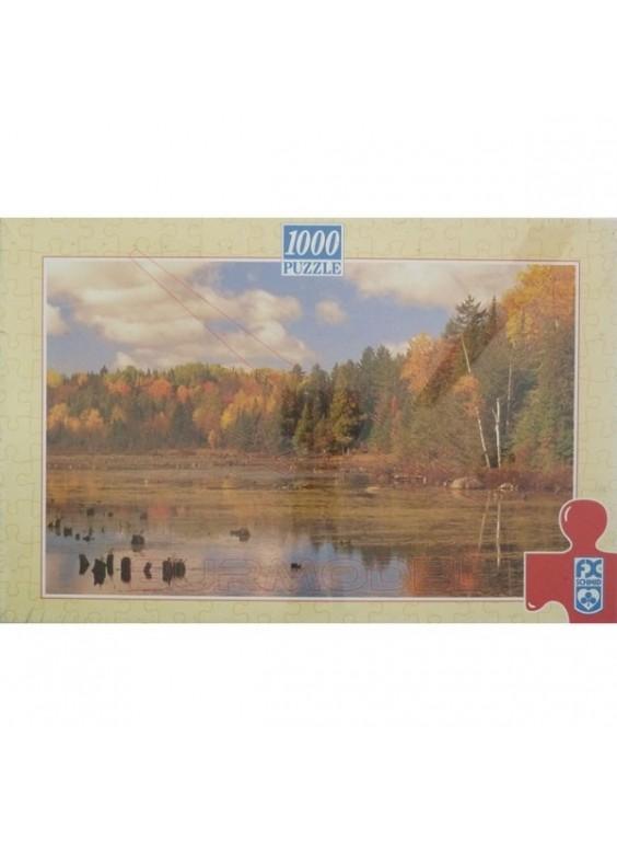 Puzzle USA 1000 piezas 67,5*44 cm