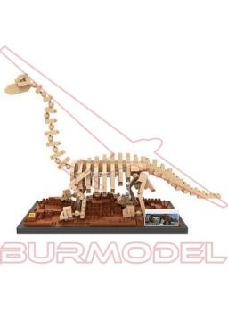 Juego de montaje esqueleto Brachiosaurus 570pcs