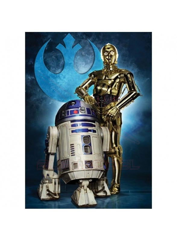 Puzzle Star Wars R2D2 y C3PO 1000 piezas