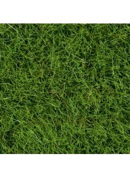 Hierbas silvestres verde mayo 6mm
