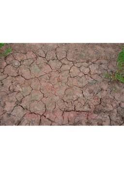 Efecto de craquelado mojado 100ml DIORAMA
