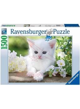 Puzzle 1500 piezas Gatito Blanco