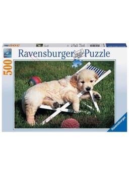 Puzzle 500 piezas Cachorros Golden Retriever.