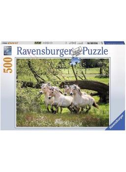 Puzzle Los caballos Noruegos del fiordo 500pzs