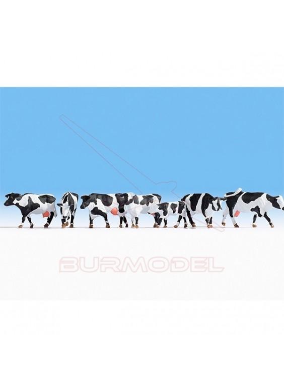 Pack vacas blanco y negro NOCH