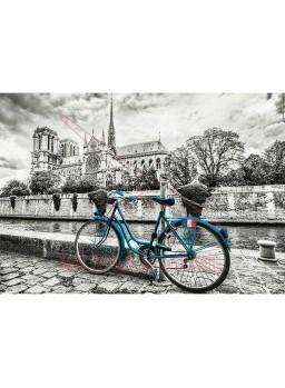 Bicicleta cerca de Notre Dame