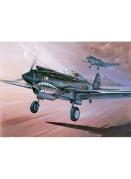 Maqueta avión P-40C Tomahawk 1/48