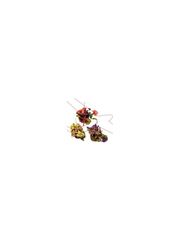 Macetas con flores