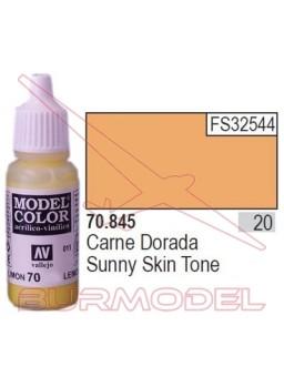 Pintura Carne dorada 845 Model Color (020)