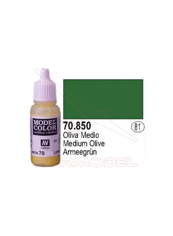Pintura Oliva medio 850 Model Color (081)